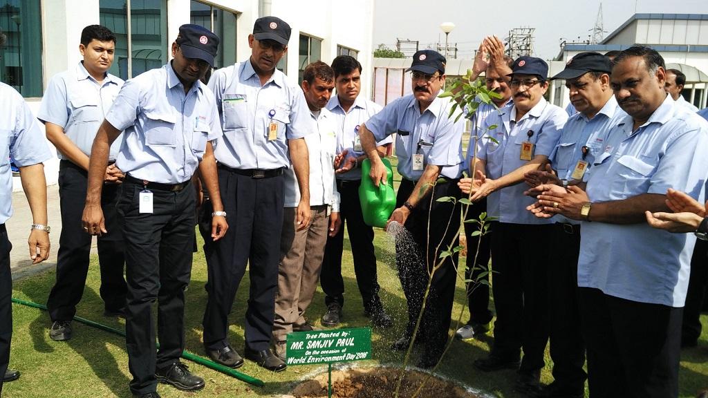 Tree Plantatation Activity at IYM